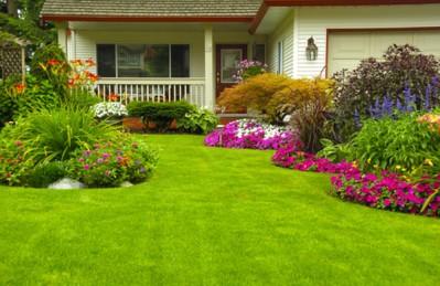 Austin landscape and yard maintenance