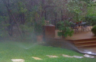 Watering schedule for Austin Landscaping